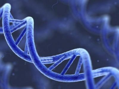 美国试管婴儿:PGS/PGD基因筛查的18个问题
